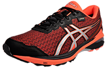 Asics GT-1000 5 GTX Gore-Tex  - AS130500
